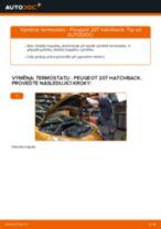 Návod k obsluze PEUGEOT pdf