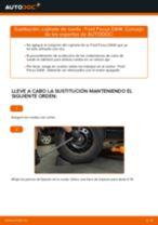 Cómo cambiar: cojinete de rueda de la parte trasera - Ford Focus DAW | Guía de sustitución