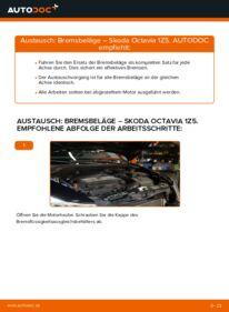 Wie der Wechsel durchführt wird: Bremsbeläge 1.9 TDI Skoda Octavia 2 Combi tauschen