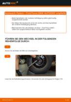 Wie Ford Focus DAW Federn hinten wechseln - Anleitung