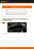 Cómo cambiar: aceite y filtro - Ford Focus DAW | Guía de sustitución