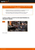 Cómo cambiar: filtros de aire - Ford Focus DAW | Guía de sustitución