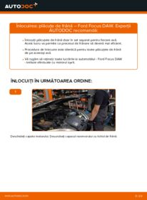 Cum să efectuați înlocuirea: Placute Frana la 1.6 16V Ford Focus DAW