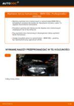 Jak wymienić tarcze hamulcowe tył w BMW E82 - poradnik naprawy