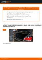 Slik bytter du fjærbenslager bak på en BMW E82 – veiledning
