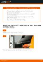 Mainīties MERCEDES-BENZ Salona filtrs - kā novērst problēmas