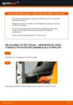 PDF manual pentru întreținere Clasa ML