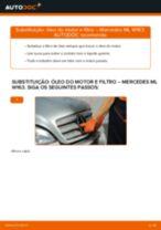 Recomendações do mecânico de automóveis sobre a substituição de MERCEDES-BENZ ML W163 ML 320 3.2 (163.154) Amortecedor
