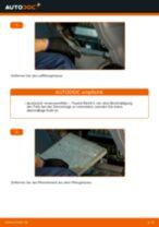 Wie Scheinwerfer Set Bi Xenon und Halogen beim TOYOTA RAV 4 II (CLA2_, XA2_, ZCA2_, ACA2_) wechseln - Handbuch online