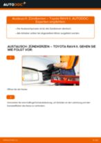 TOYOTA RAV 4 II (CLA2_, XA2_, ZCA2_, ACA2_) Axialgelenk: Schrittweises Handbuch im PDF-Format zum Wechsel