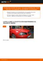 Recomendaciones de mecánicos de automóviles para reemplazar Filtro de Habitáculo en un SEAT Seat Ibiza 6l1 1.4 16V