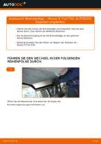 Wie Bremssteine hinten + vorne beim LEXUS CT wechseln - Handbuch online