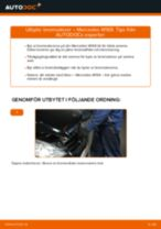 Bilmekanikers rekommendationer om att byta MERCEDES-BENZ Mercedes W168 A 170 CDI 1.7 (168.009, 168.109) Bromsskivor
