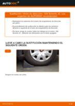 Manual de instrucciones KIA gratuito