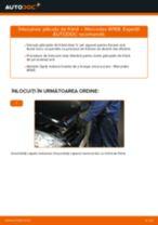 Manual intretinere DACIA pdf