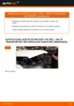 VW TRANSPORTER manual de solución de problemas