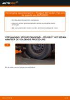 Hoe Stabilisator veranderen en installeren PEUGEOT 407: pdf handleiding