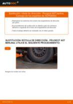 Cambiar Cilindro de Freno de Rueda PEUGEOT 407: manual de taller