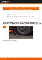 Comment changer et régler Filtre climatisation PEUGEOT 407 : tutoriel pdf