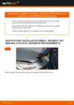 Tutorial de reparación y mantenimiento de PEUGEOT 407