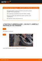 PDF med trinn for trinn-veiledning for bytte av VW GOLF V (1K1) Fjærbenslager