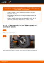 Cambio Tirante barra estabilizadora delantera y trasera VW bricolaje - manual pdf en línea