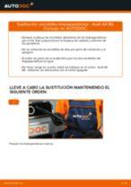 Cambio Cilindro de freno delantero y trasero NISSAN bricolaje - manual pdf en línea