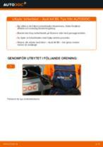 Byta Lambdasond AUDI A4 (8E2, B6): guide pdf