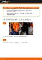 PDF guide för byta: Bränslefilter AUDI A4 Sedan (8E2, B6) diesel och bensin