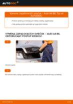 Ako vymeniť a regulovať Zapalovacia sviečka AUDI A4: sprievodca pdf