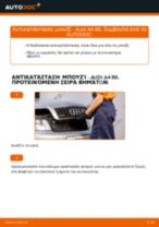 PDF εγχειρίδιο αντικατάστασης: Μπουζί AUDI A4 Sedan (8E2, B6)