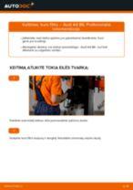 Kaip pakeisti benzinas Kuro filtras AUDI A4 (8E2, B6) - instrukcijos internetinės