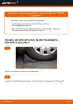 Wie Audi A4 B6 Spurstangenkopf wechseln - Anleitung