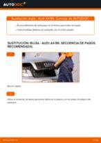 Cómo cambiar: bujía - Audi A4 B6 | Guía de sustitución