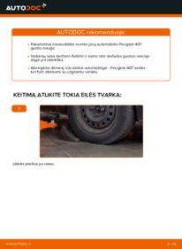 Kaip atlikti keitimą: 2.0 HDi 135 Peugeot 407 Sedan Rato guolis