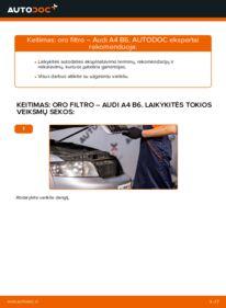 Kaip atlikti keitimą: 1.9 TDI Audi A4 b6 Oro filtras