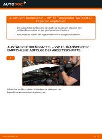 Wie der Wechsel durchführt wird: Bremssattel 2.5 TDI VW T5 Kasten tauschen
