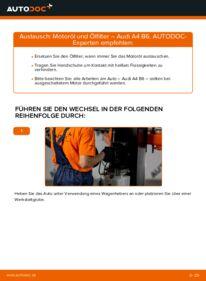 Wie der Wechsel durchführt wird: Ölfilter 1.9 TDI Audi A4 b6 tauschen