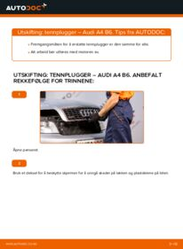 Slik bytter du Tennplugger på AUDI A4