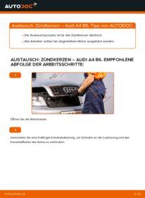 Wie der Wechsel durchführt wird: Zündkerzen 1.9 TDI Audi A4 B6 tauschen