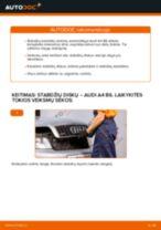 Kaip pakeisti ir sureguliuoti Rėmas, stabilizatoriaus tvirtinimas AUDI A4: pdf pamokomis