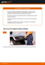 Înlocuire Kit discuri frana spate si față AUDI cu propriile mâini - online instrucțiuni pdf