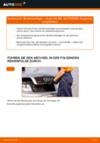 AUDI A4 (8E2, B6) Bremsbelagsatz Scheibenbremse ersetzen - Tipps und Tricks