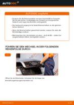 Wie Audi A4 B6 Bremsscheiben hinten wechseln - Anleitung