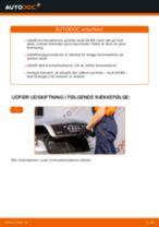 Udskift bremseskiver bag - Audi A4 B6 | Brugeranvisning
