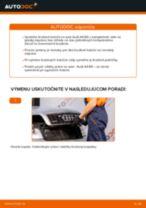 Vymeniť Brzdový kotouč AUDI A4: zadarmo pdf