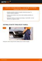 Kaip pakeisti Audi A4 B6 stabdžių trinkeliu: galas - keitimo instrukcija