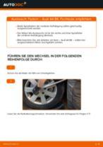 Wie Audi A4 B6 Federn vorne wechseln - Anleitung