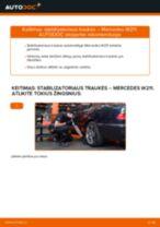 Mercedes S211 online vadovas