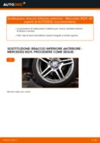Cambio Freno a Tamburo posteriore e anteriore Ford Fiesta Mk6 Sedan: guida pdf